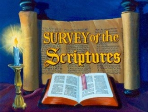 Basic Bible Survey One - OT
